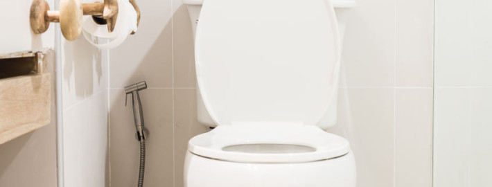 Common Causes of Leaky Toilets